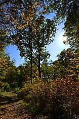 Herbstwanderung vom KKV_5