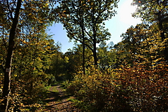 Herbstwanderung vom KKV_6
